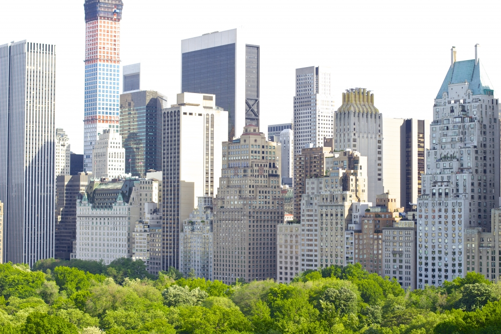 Central Park Rooftop View