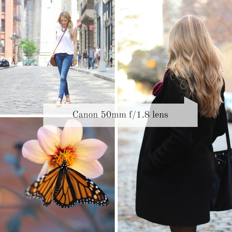 Canon 50mm f/1.8 lens   Adorned With Love
